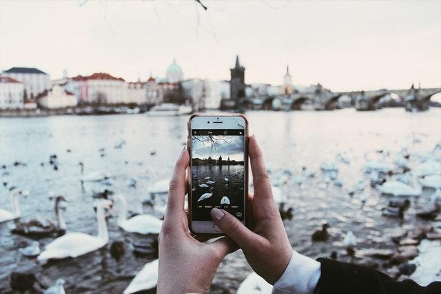 zimní Praha, labutě.jpg